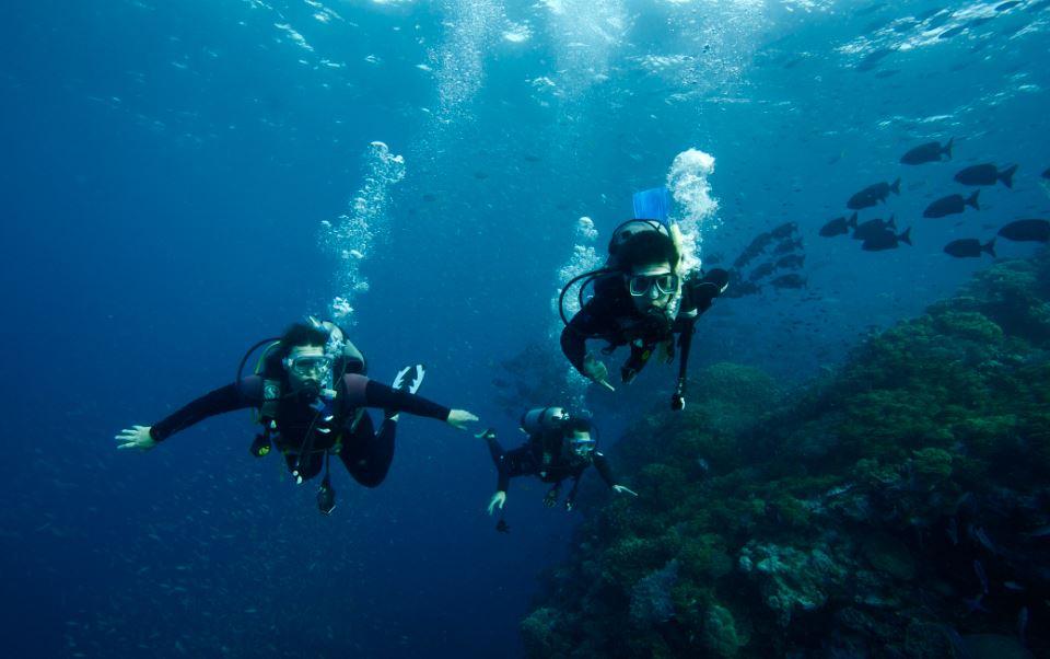 liveaboard-scuba-dive - liveaboards