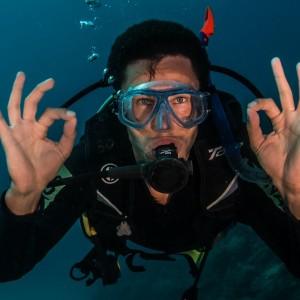 liveaboard scuba dive