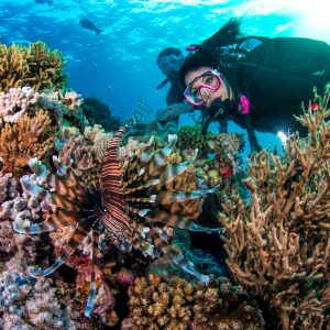 Learn to scuba dive Cairns on Australia's Great Barrier Reef